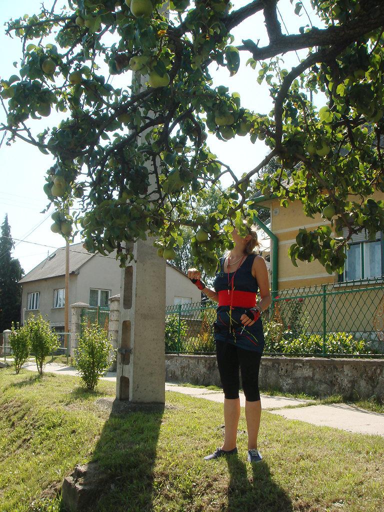 wwwjuliastuebnerde-R-33.jpg