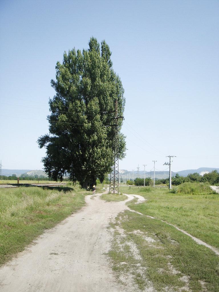 wwwjuliastuebnerde-R-34.jpg