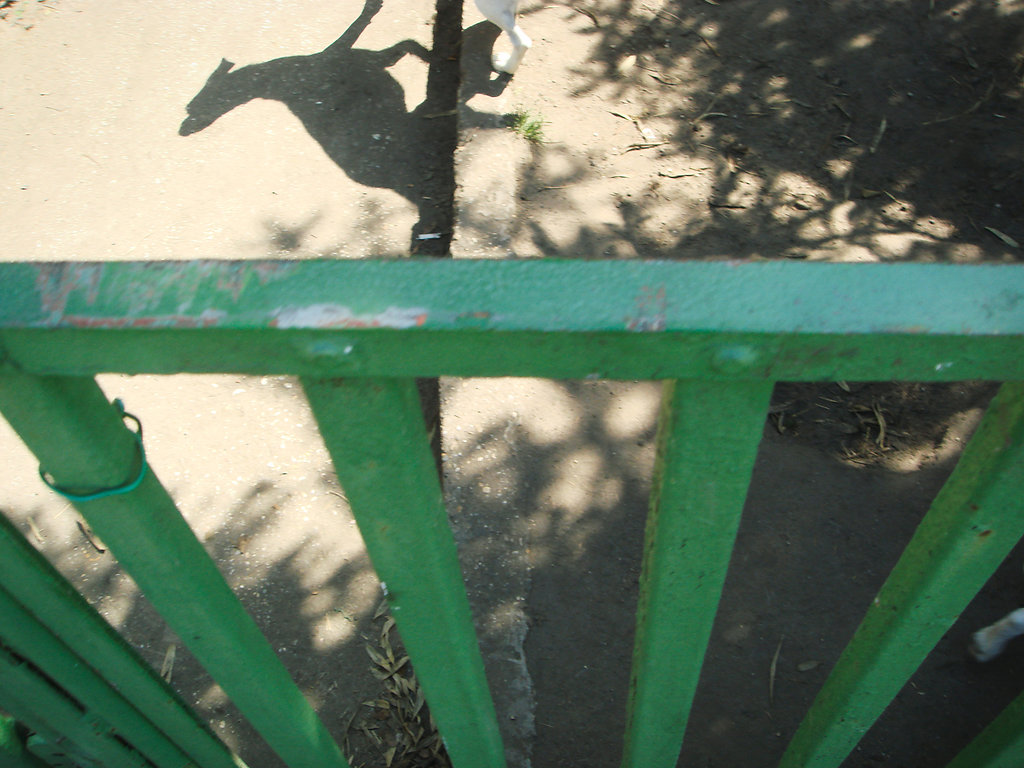 wwwjuliastuebnerde-R-35.jpg